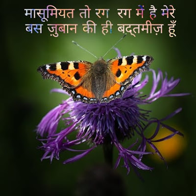 hindi image dp