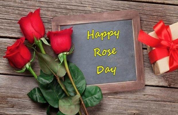 Roj Day Kaise Manaye पुरी जानकारी in Hindi