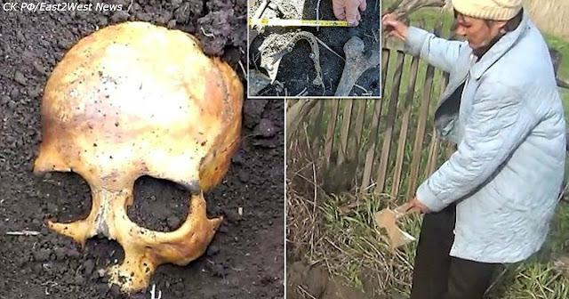 Мужик сажал картошку – и нашел кости бывшего мужа своей жены!!