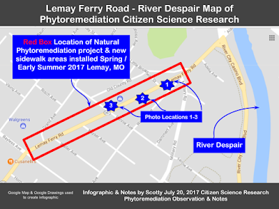 Phytoremediation Citizen Science Map Lemay Ferry Rd River Despair StLouis MO