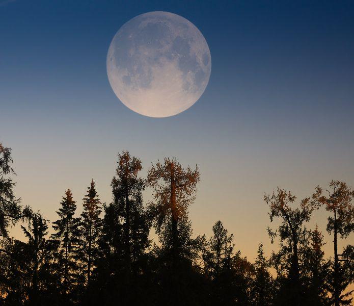 Ce soir la pleine lune rose 11 avril 2017 ne la ratez - Jardiner avec la lune avril 2017 ...