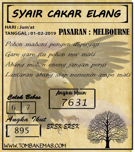 SYAIR Melbourne, 01-02-2019