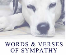 words & verses for pet sympathy