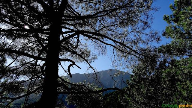 Ruta circular al Gran Galayo, Punta D. Servando y La Mira, desde el Nogal del Barranco en la Sierra de Gredos (Ávila).
