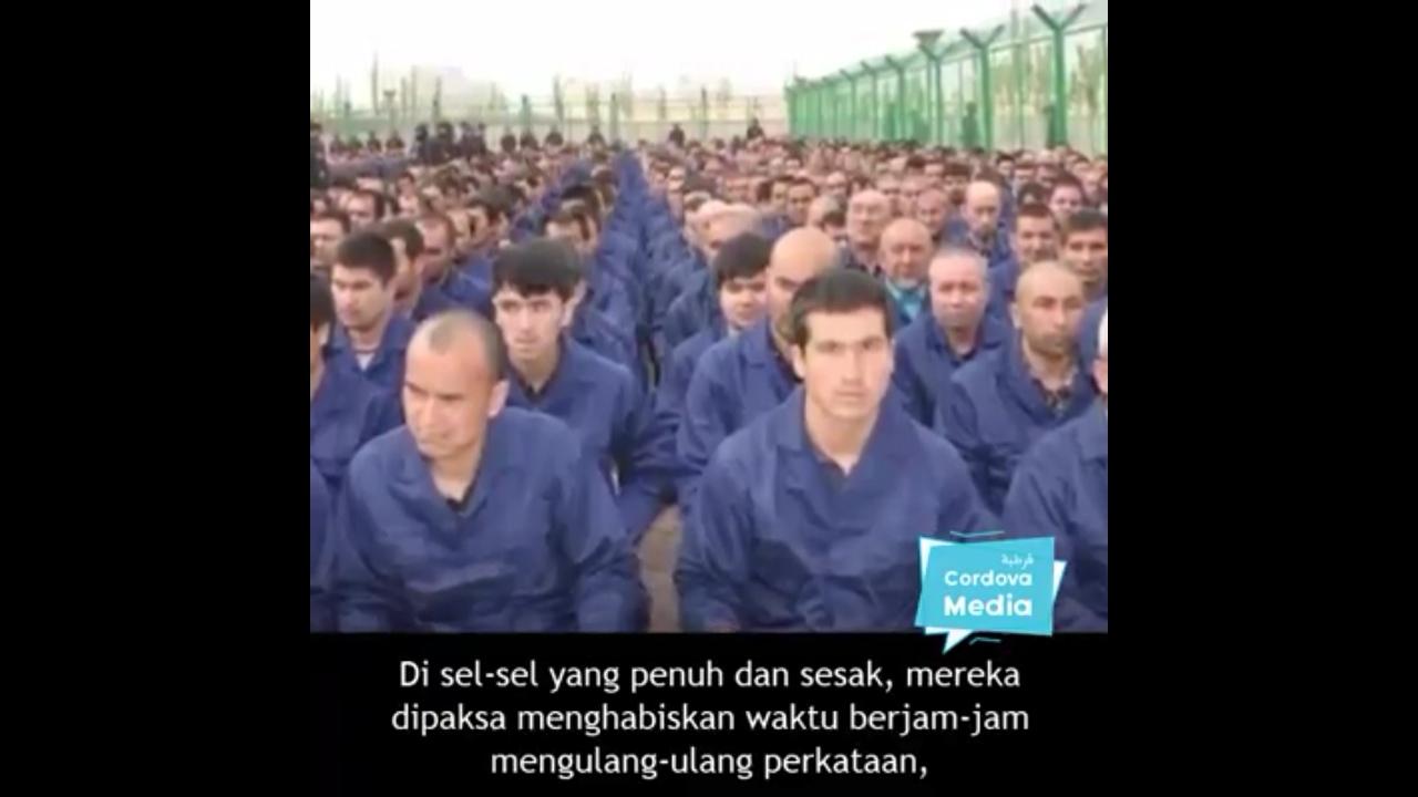 Saat Kita Makan Enak dan Tidur Nyenyak, Ini Kejadian Mengenaskan yang Dialami Muslim Uyghur