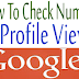 How To Check How Many Views Your Google+ Profile