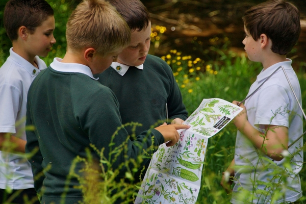 Children working with Devon Wildlife Trust in an outdoor learning environment. Photo copyright Charlie Tyjas (All Rights Reserved)