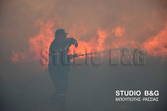 Πυρκαγιά στο βάλτο Νέας Κίου τα ξημερώματα