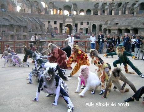 musical cats al colosseo