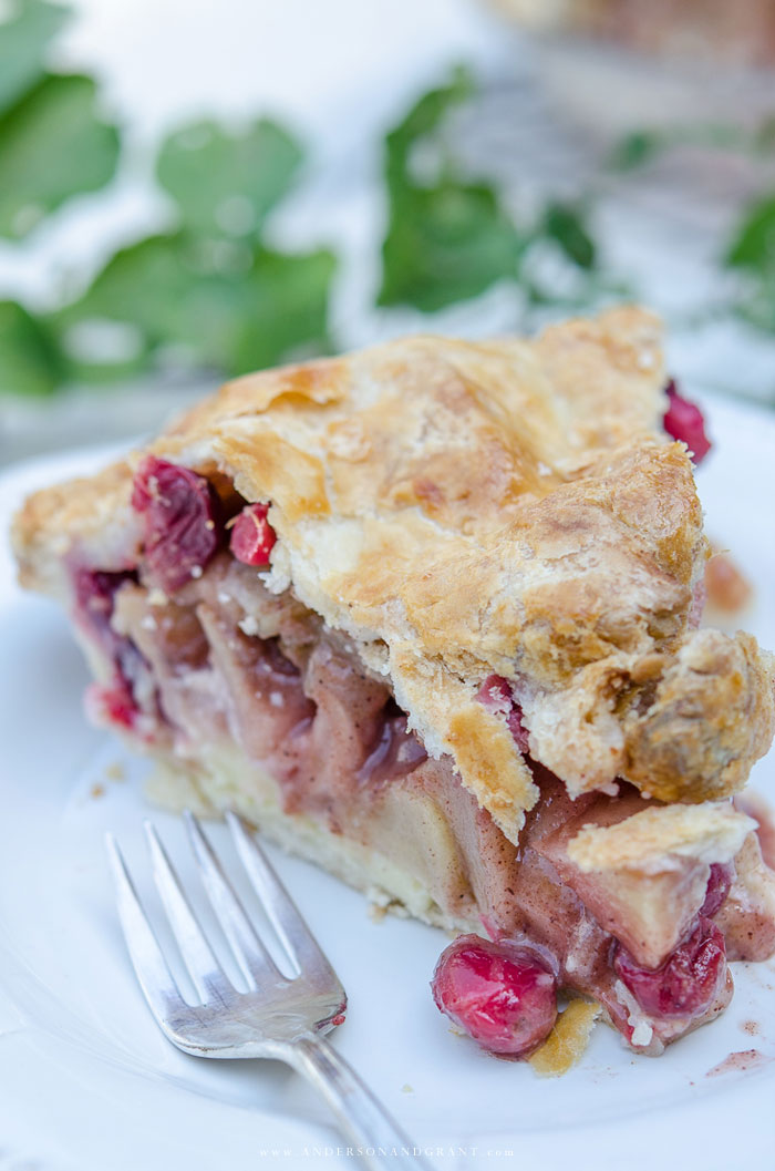 Slice of apple cranberry pie