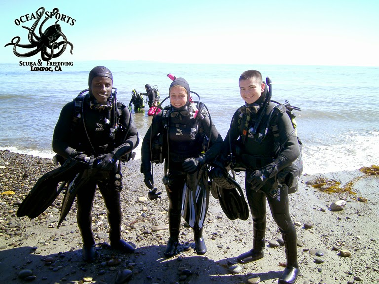 being amphibious scuba diving and freediving Scuba diving masks offer various ranges in price, with some being extremely affordable  with some being extremely affordable  the adventure junkies is a.