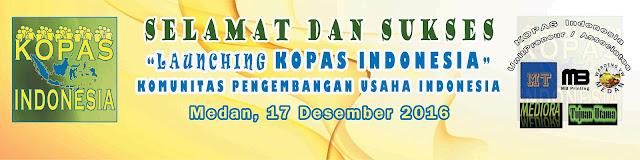 Launching KOPAS