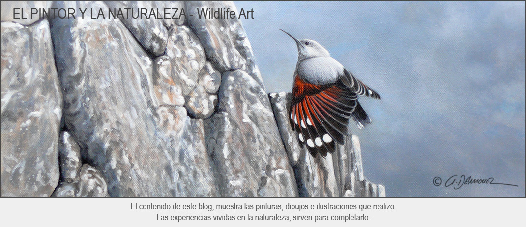 Arturo de Miguel - Wildlife Art