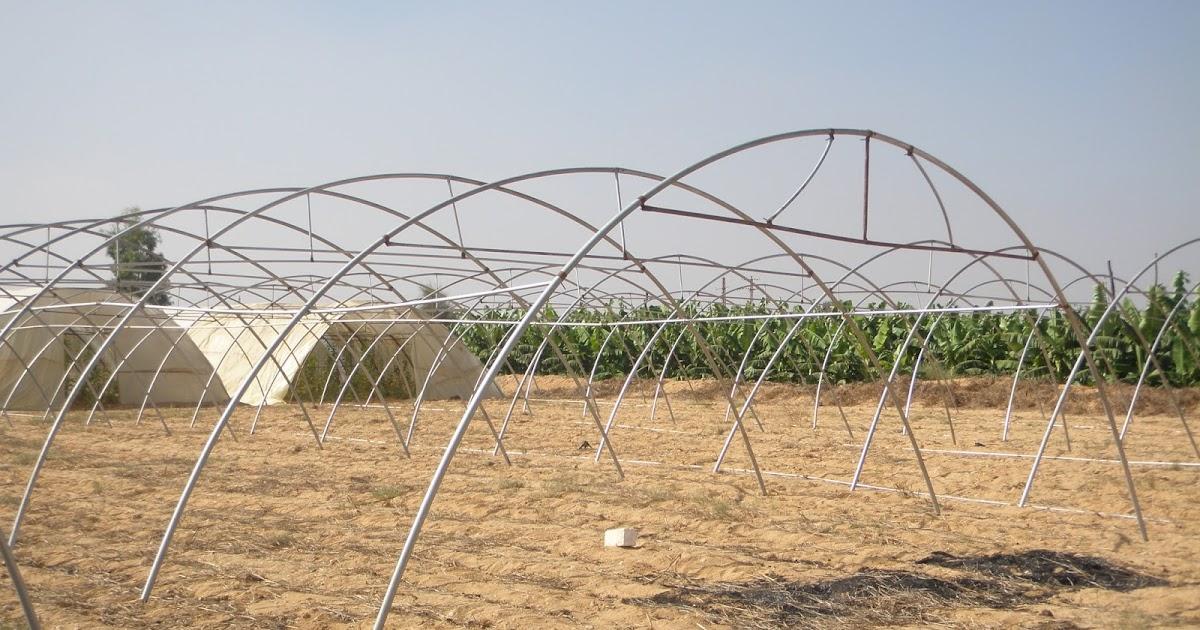 مؤسسة نور الحسام للتنمية الزراعية جدوى زراعة 4200 متر بيوت محمية منزرعه خيار بيوت محمية غير مكيفة