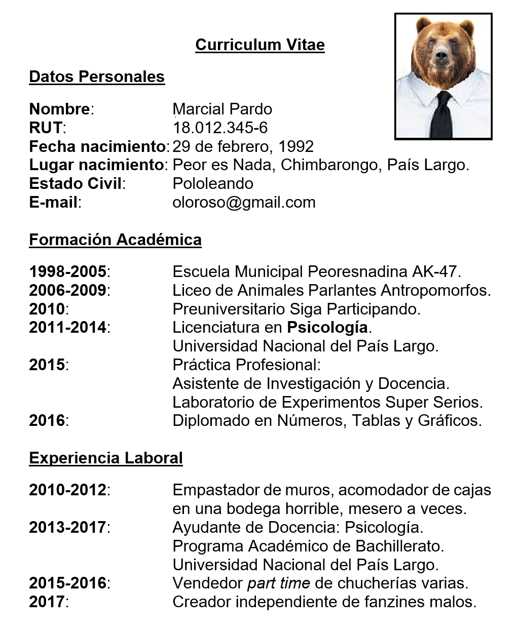 Moderno Mi Creador De Currículums Embellecimiento - Ejemplo De ...