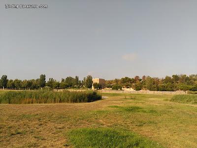 Vista general del parc, amb la torre al fons