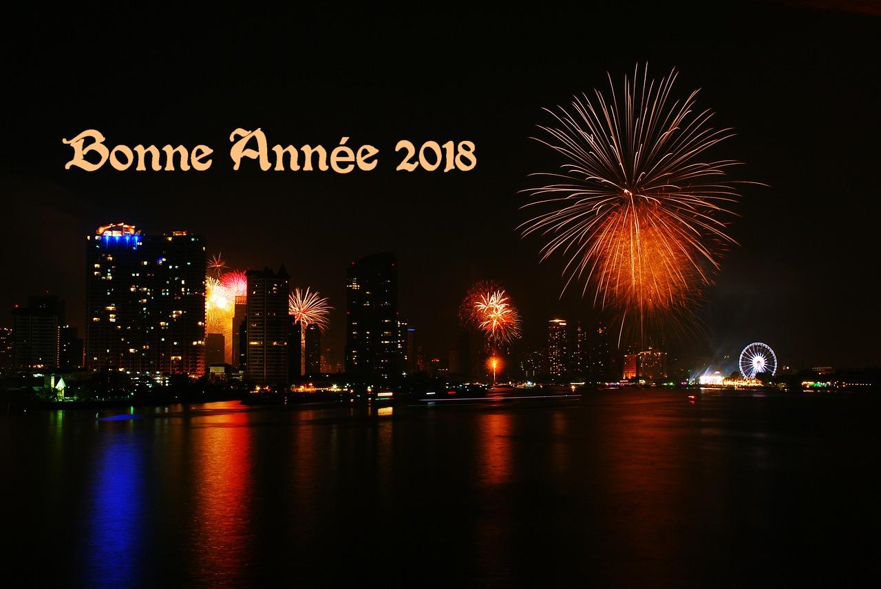 Sms romantique pour souhaiter bonne ann e 2018 message d - Belles images bonne annee ...