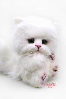 NatalKa Creations, Clemens Spieltiere, Natalie Lachnitt, artist teddy bear, Künstlerteddy, white kitten, weisse Katze, пушистый белый кот, artist cat, teddy cat, авторская игрушка