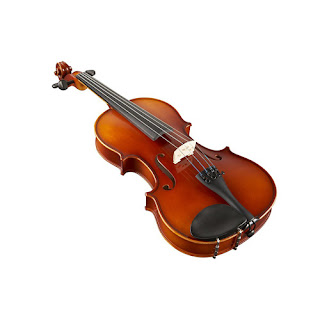 Violin Suzuki NS20FE 4/4
