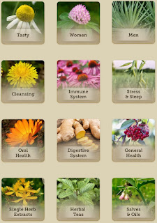 http://www.savingshepherd.com/collections/natural-hope-herbals/Single-Herb-Extract