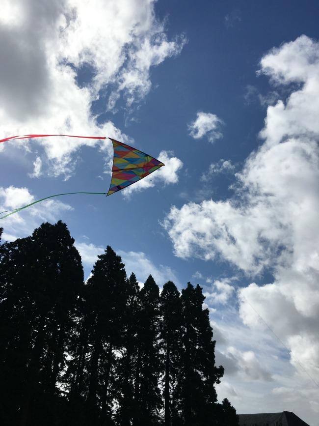 kite-in-sky