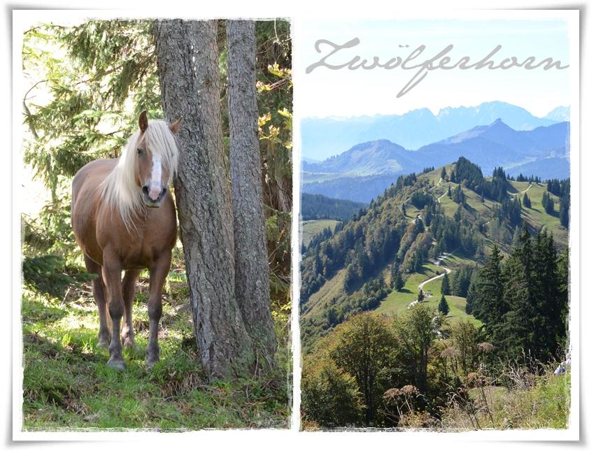 Wandern in Österreich