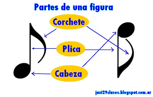 partes de una figura musical, nota musical cabeza plica corchete