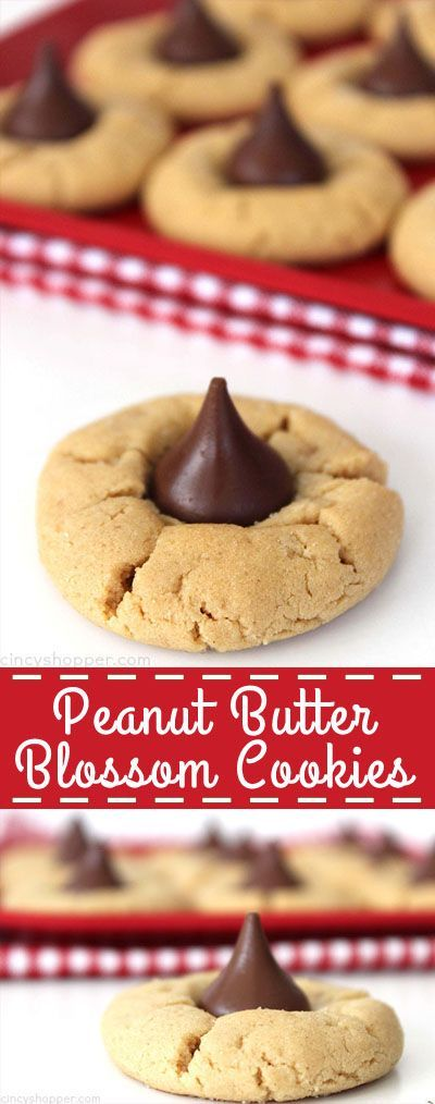 PEANUT BUTTER BLOSSOM COOKIES #PEANUT #BUTTER #BLOSSOM #COOKIES  #HEALTHYFOOD #EASYRECIPES #DINNER #LAUCH #DELICIOUS #EASY #HOLIDAYS #RECIPE #DESSERTS #SPECIALDIET #WORLDCUISINE #CAKE #APPETIZERS #HEALTHYRECIPES #DRINKS #COOKINGMETHOD #ITALIANRECIPES #MEAT #VEGANRECIPES #COOKIES #PASTA #FRUIT #SALAD #SOUPAPPETIZERS #NONALCOHOLICDRINKS #MEALPLANNING #VEGETABLES #SOUP #PASTRY #CHOCOLATE #DAIRY #ALCOHOLICDRINKS #BULGURSALAD #BAKING #SNACKS #BEEFRECIPES #MEATAPPETIZERS #MEXICANRECIPES #BREAD #ASIANRECIPES #SEAFOODAPPETIZERS #MUFFINS #BREAKFASTANDBRUNCH #CONDIMENTS #CUPCAKES #CHEESE #CHICKENRECIPES #PIE #COFFEE #NOBAKEDESSERTS #HEALTHYSNACKS #SEAFOOD #GRAIN #LUNCHESDINNERS #MEXICAN #QUICKBREAD #LIQUOR
