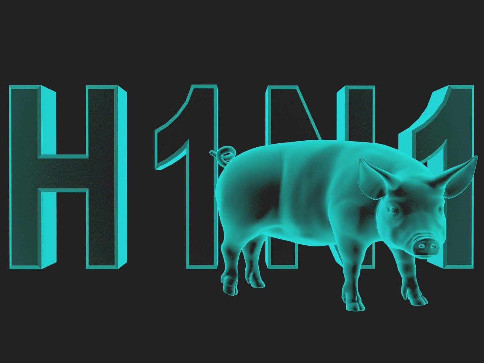 11/01/2019 ყველაზე მძიმე დღე, 2019 წლის დაწყების შემდეგ დღეს 3 ადამიანი გარდაიცვალა H1N1-ით