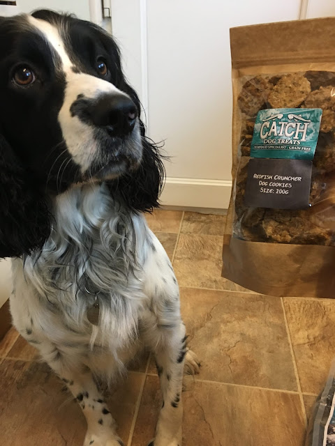petshop.co.uk-catch-dog-food