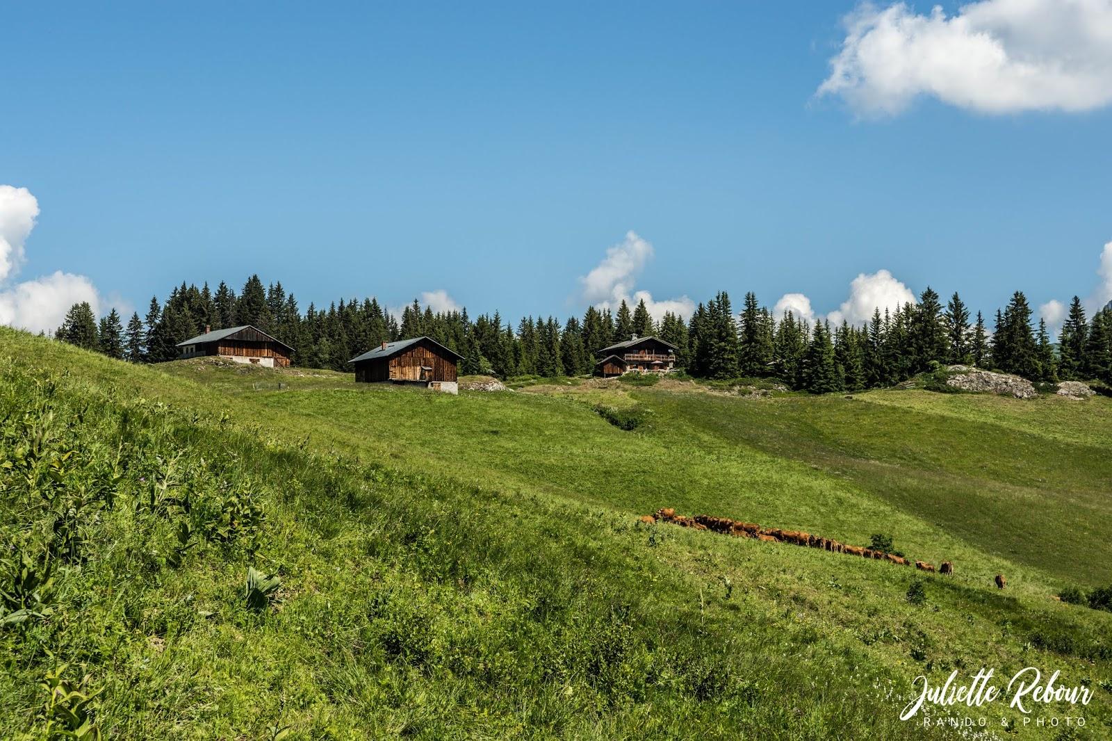 Chalet de montagne dans les Alpes
