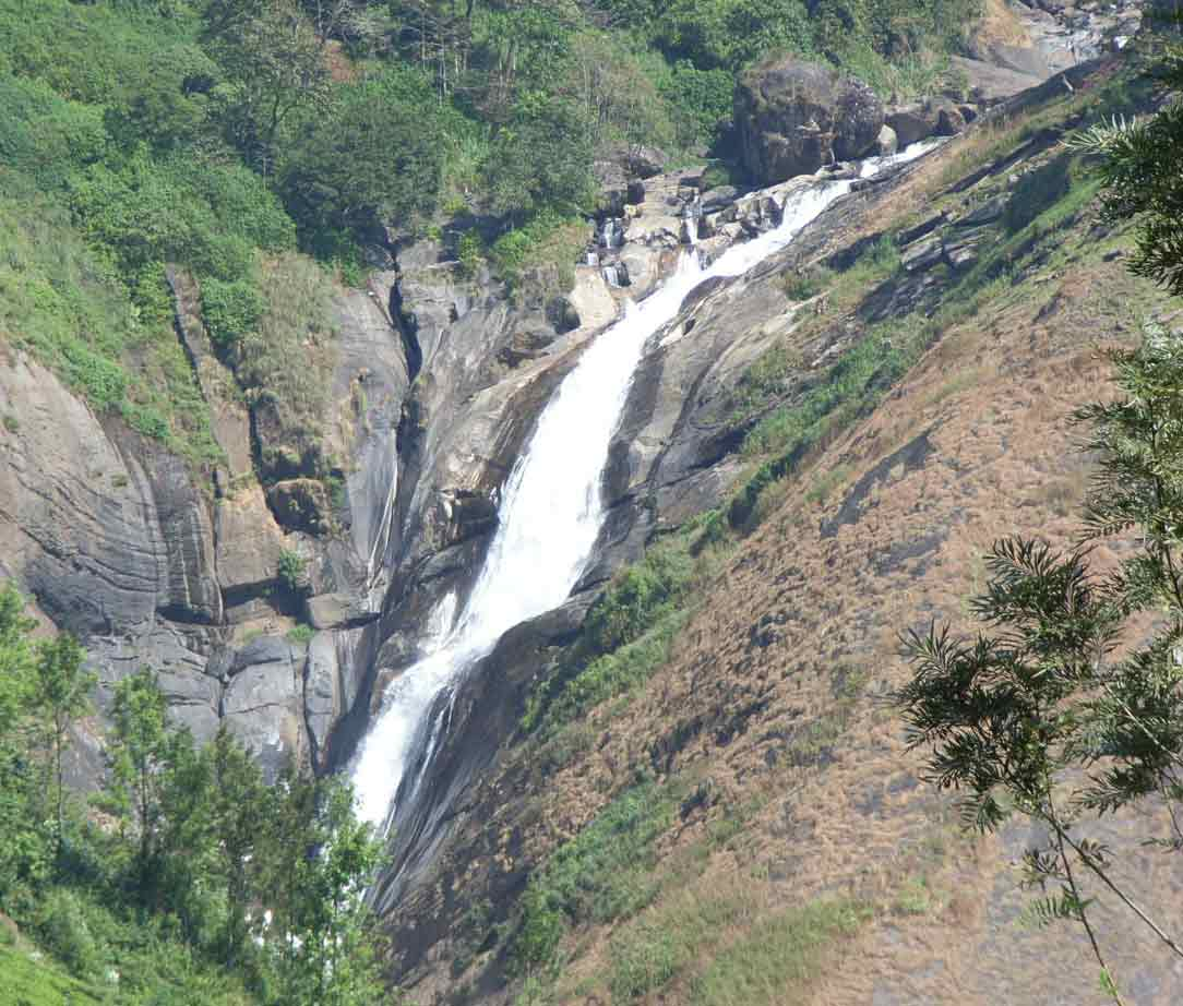 Tourist places munnar sightseeing munnar hill station - Olive garden spring hill tennessee ...