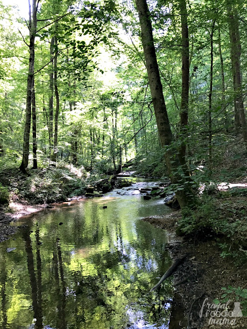 Clear Creek trail is a 12 mile loop walking trail. The trail is mostly shaded with gentle upgrades as it follows alongside the path of Clear Creek.