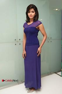 Tamil Actress Dhansika Stills in Purple Long Dress at Simba Audio Launch  0016.jpg