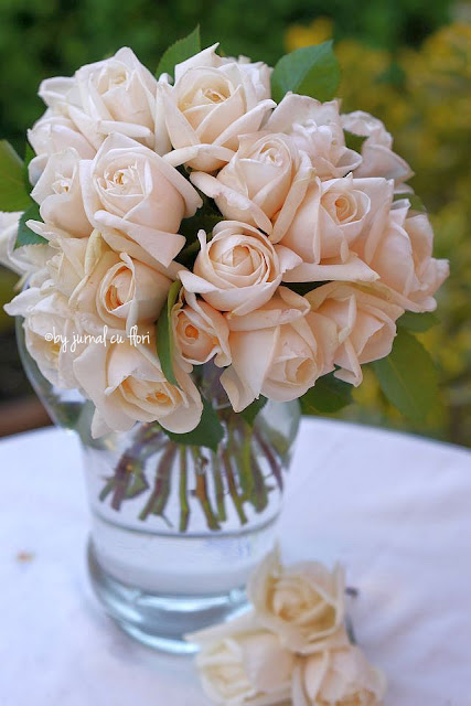#florifrumoase #iubesctrandafirii
