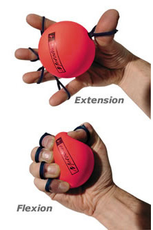 Tom S Physiotherapy Blog Hand And Finger Exercises