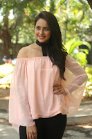 Rakul Preet Singh in lovely Pink Crop Top and Black Trousers at Jaya Janaki Nayaka success meet 059.JPG