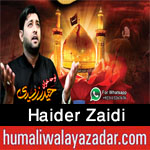 http://www.humaliwalayazadar.com/2016/09/haider-zaidi-nohay-2017.html