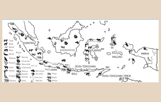 Peta Persebaran Fauna di Indonesia