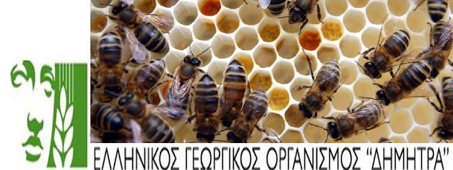 Ημερίδα για τους μελισσοκόμους του Νομού Δράμας: Ομιλητές -  Ανδρέας Θρασυβούλου - Ελισάβετ Λαζαρίδου - Φώτης Κανετούνης!!! Είσοδος ελεύθερη
