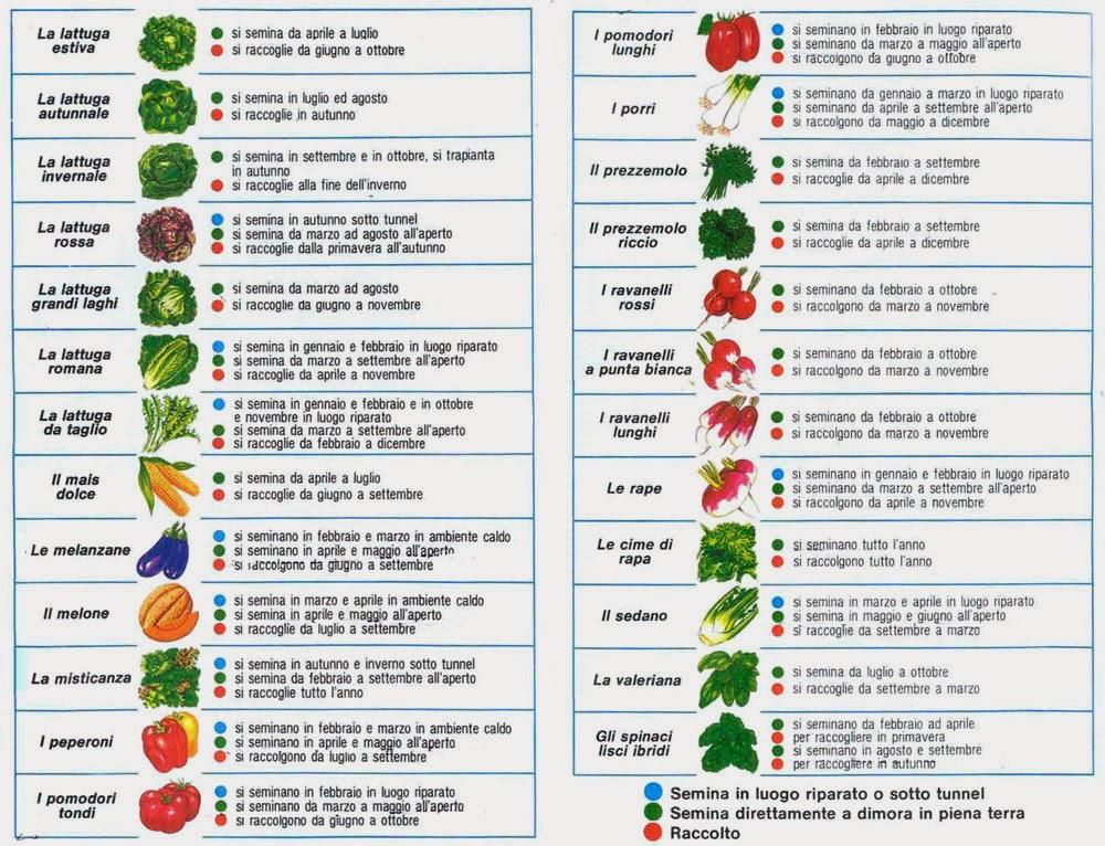 Calendario Di Semina.Calendario Dei Lavori Dell Orto Mese Per Mese Orti In
