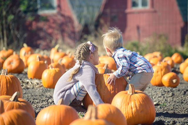 Halloween Pumpkin Patch Family Night Activity