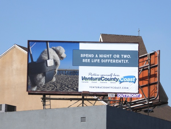 Ventura County Coast tourism dog billboard