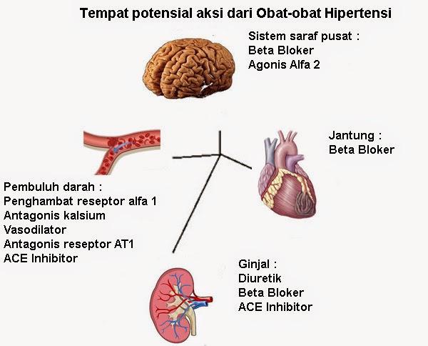 Resep Minuman Segar Dingin Obat Hipertensi (Part II)