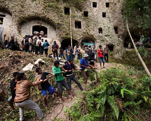Tinuku.com Travel Ma'nene ritual in Tana Toraja, an Aluk To Dolo funerals for cleaning ancestral mummies who died decades