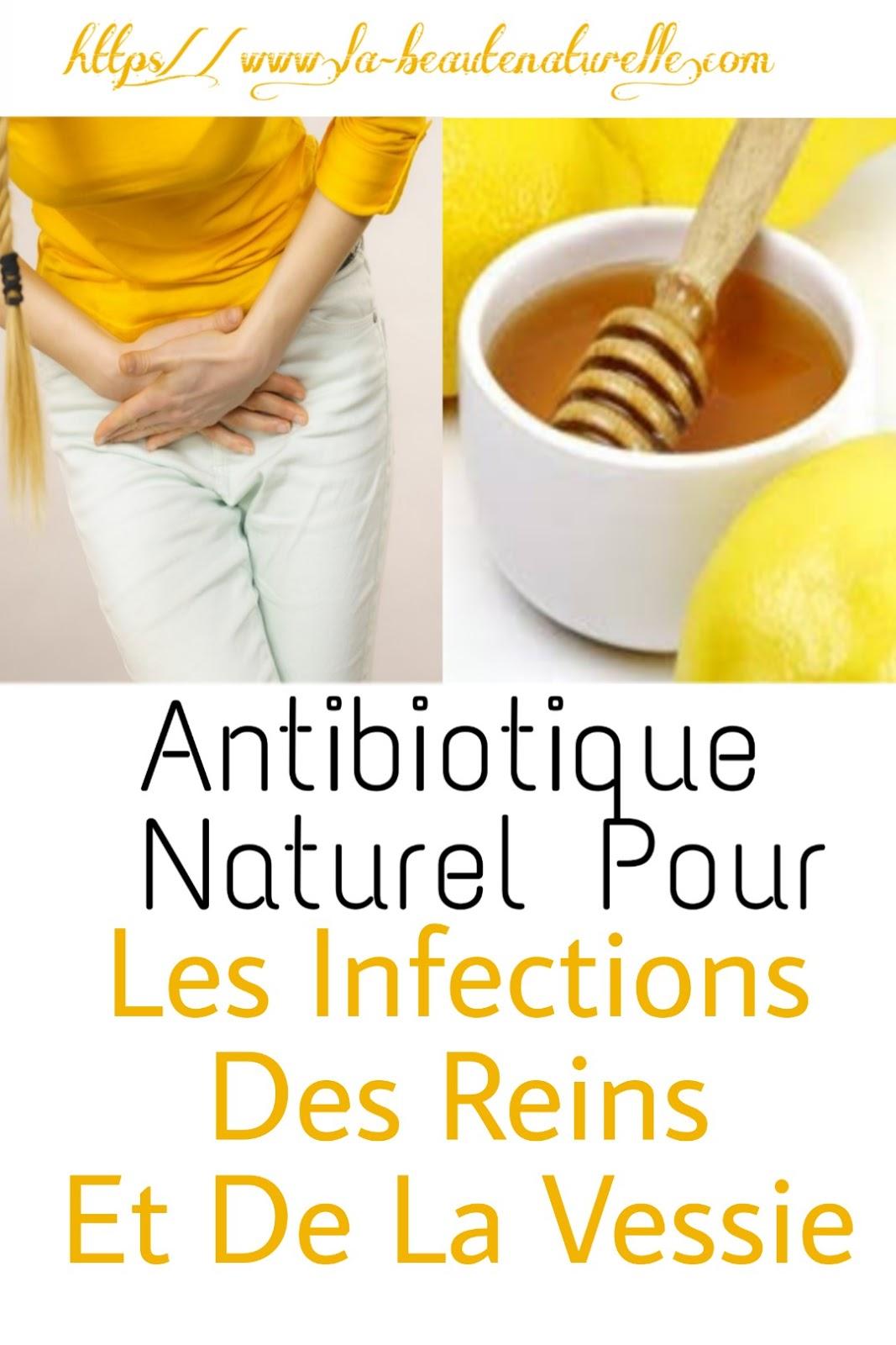 Antibiotique Naturel Pour Les Infections Des Reins Et De La Vessie