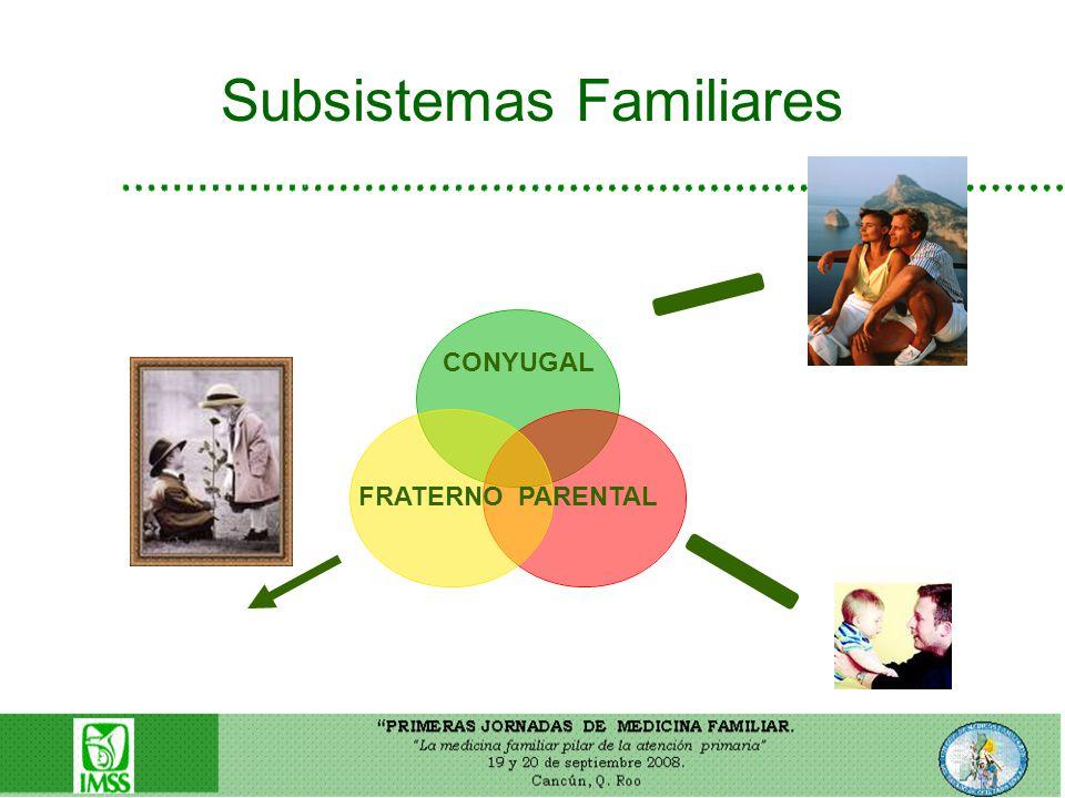 Subsistemas Familiares Pdf Fusionar Comramblatens Cf