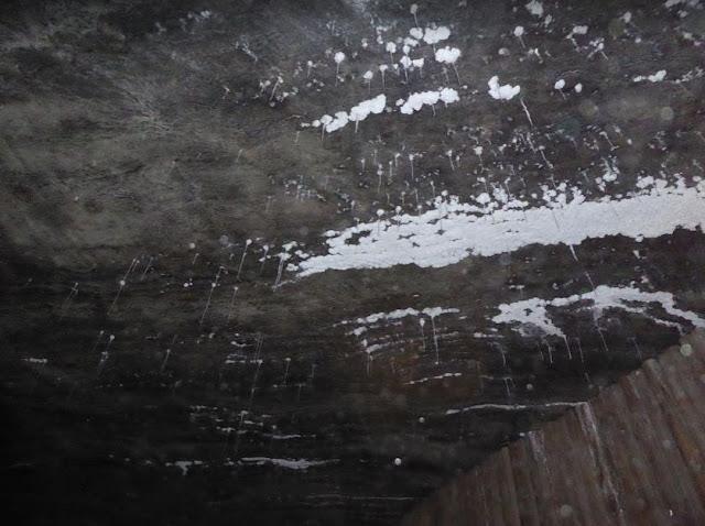 stalattiti di sale nella miniera di Wieliczka
