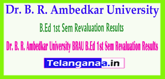 Dr. B. R. Ambedkar University (BRAU) B.Ed 1st Sem Revaluation Results 2018