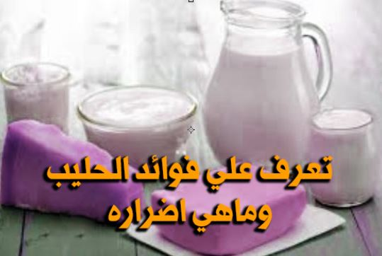 فوائد الحليب واضراره ومعلومات لاول مرة سوف تعرفها